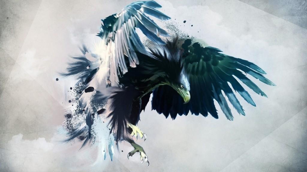bird-wallpapers-stugon.com (17)