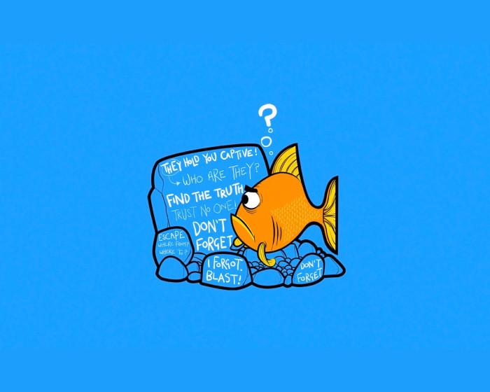 www.stugon.com-funny-humor-wallpapers (12)